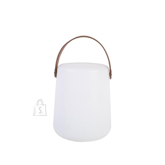 LED meeleoluvalgusti ORION