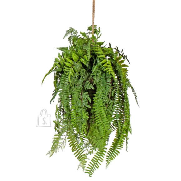 Rippuv taim samblapalliga IN GARDEN 55cm