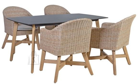 Aiamööbel Henry laud ja 4 tooli