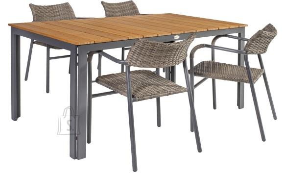 Aiamööbel Greenwood laud ja 4 tooli