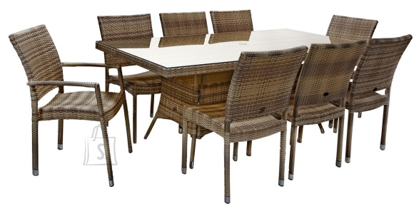 Aiamööbel Wicker laud ja 8 tooli