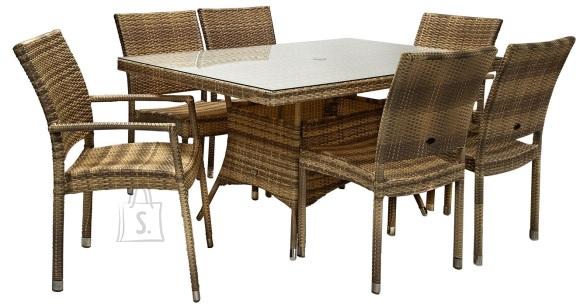 Aiamööbel Wicker laud ja 6 tooli
