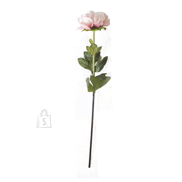 Pojeng IN GARDEN, H74cm, roosa