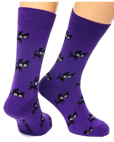 Sokid kassid