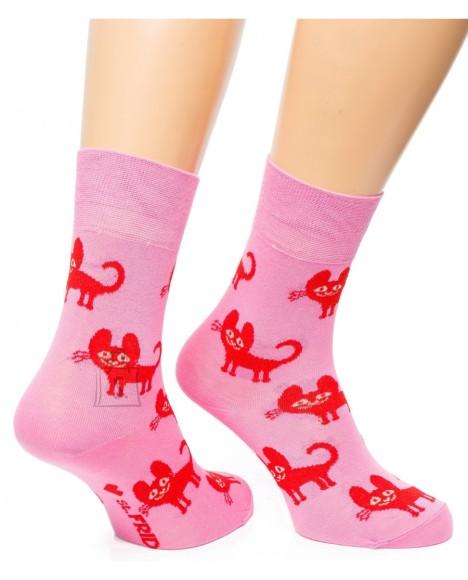 Sokid roosad kassid