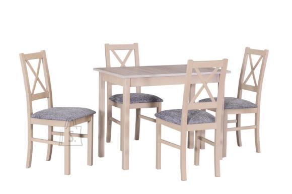 Söögilaud + 4 tooli