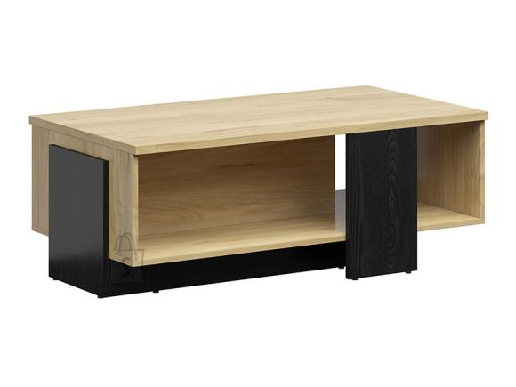 Rodes coffee table belarus ash/black oak
