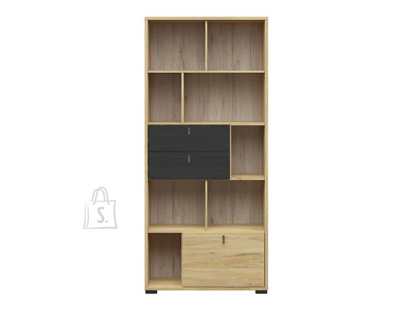 Rodes cabinet belarus ash/black oak