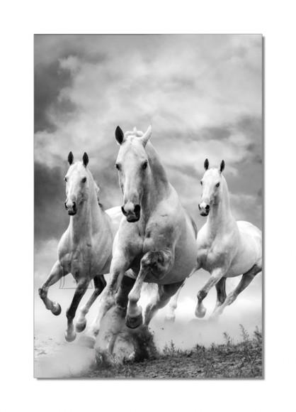 Dekoratiivpilt Horses