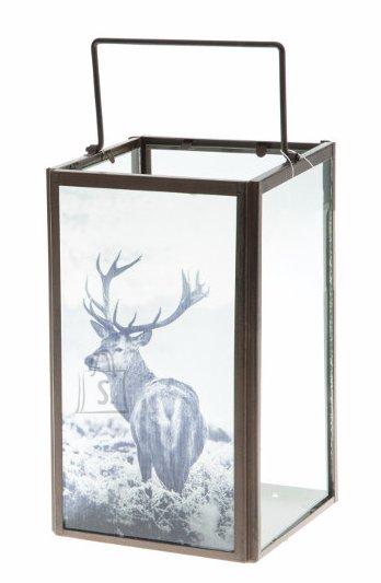 Küünlalatern Deer
