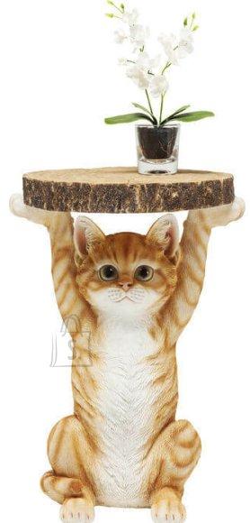 Abilaud Cat