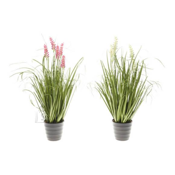Kunstlill Flower in Grass