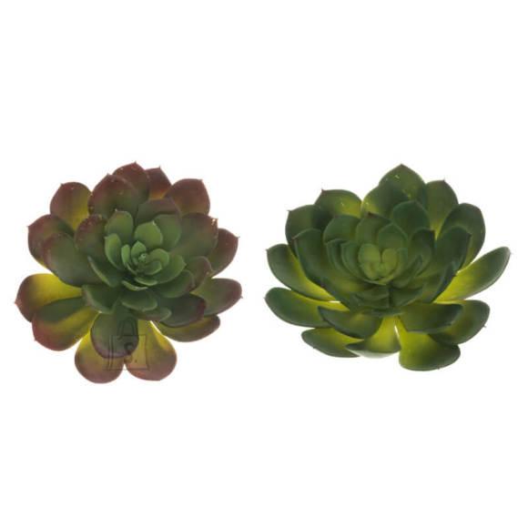 Kunstlill Succulent