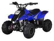 Laste ATV Quad Mikro 110cc