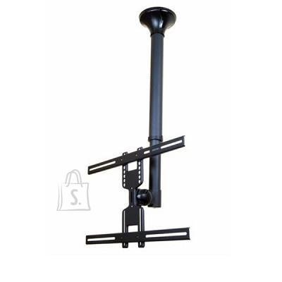 "TV SET ACC CEILING MOUNT/22-52"" FPMA-C400BLACK NEWSTAR"