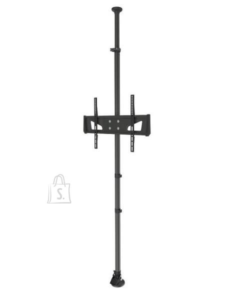 "TV SET ACC CEILING MOUNT/37-65"" FPMA-CF250BLACK NEWSTAR"