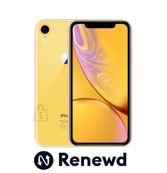 MOBILE PHONE IPHONE XR 64GB/YELLOW RND-P11364 APPLE RENEWD