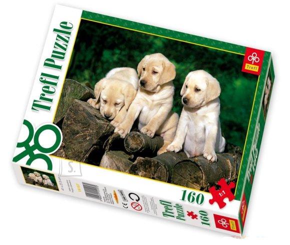 Trefl pusle Labradori kutsikad 160 tk