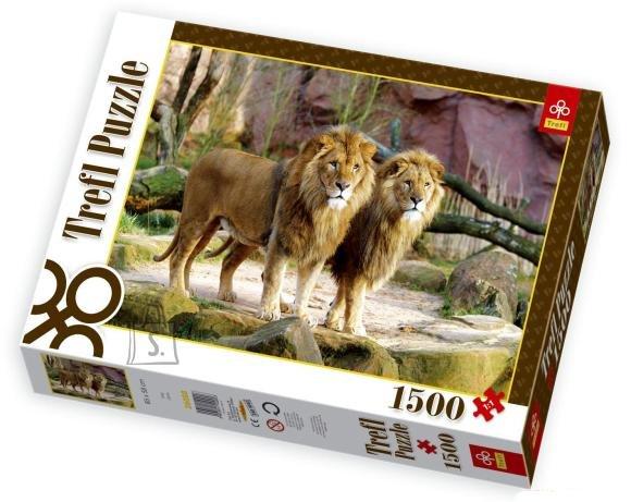 Trefl pusle Lõvid 1500 tk