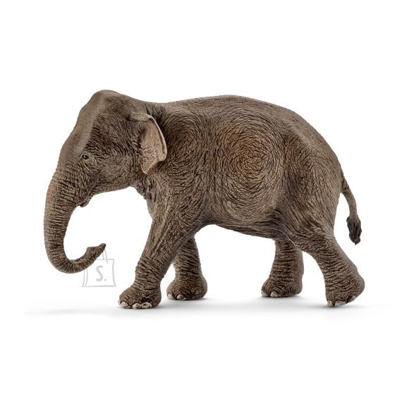 Schleich Wild Life emane Aasia elevant
