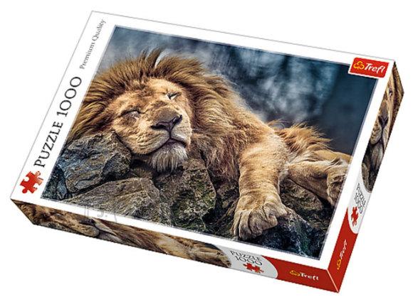 Trefl pusle Magav lõvi 1000 tk
