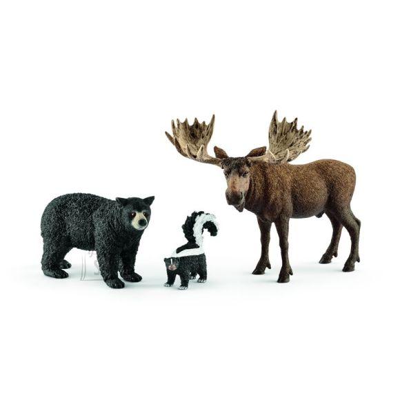 Schleich Wild Life Põhja-Ameerika metsloomad