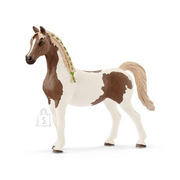 Schleich Horse Club Araabia Pinto mära