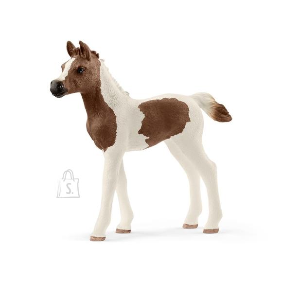 Schleich Horse Club Araabia Pinto varss