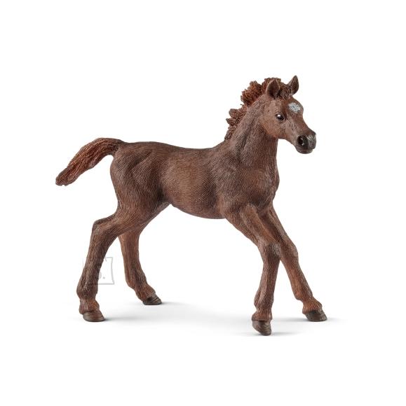 Schleich Horse Club Inglise puhtatõuline varss