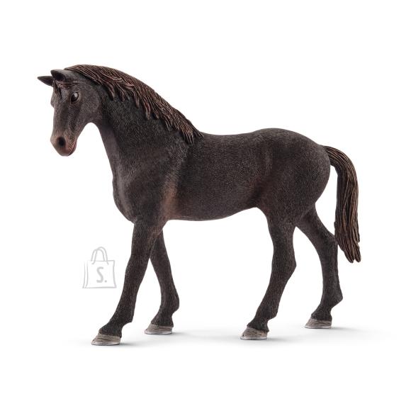 Schleich Horse Club Inglise puhtatõuline täkk