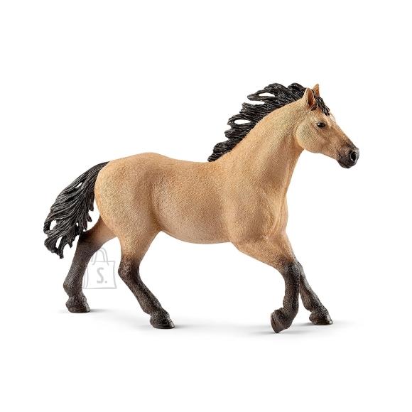 Schleich Horse Club veerandmiili hobune/täkk