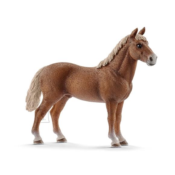 Schleich Farm World Morgani hobune/täkk