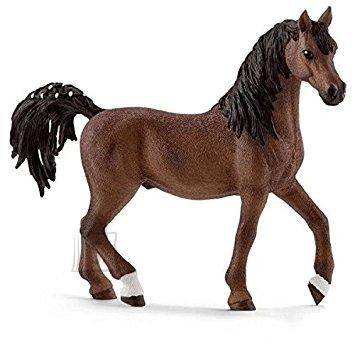 Schleich Horse Club Araabia hobuse täkk