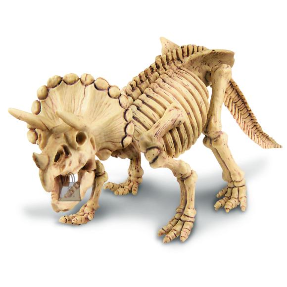 4M 4M Komplekt kaeva välja Triceratops