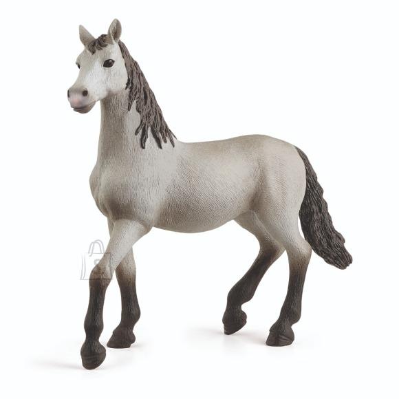 Schleich SCHLEICH HORSE CLUB Puhtat��ulise hispaania hobuse varss