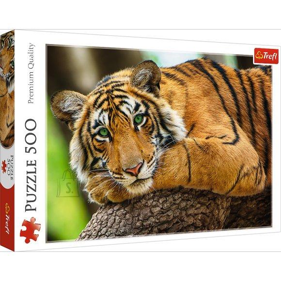 TREFL Pusle 500 Tiiger