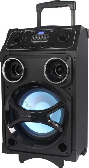 Roadstar DJ 880 võimendiga kõlar 100 W