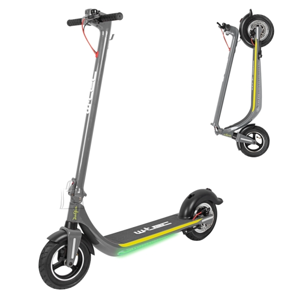 W-Tec E-Scooter W-TEC Dalfin 10??? - Grey