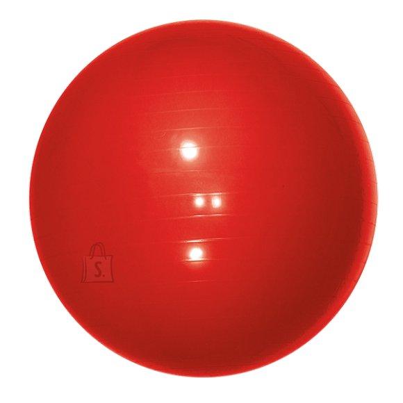 Gym Ball Yate, 65 cm - Red