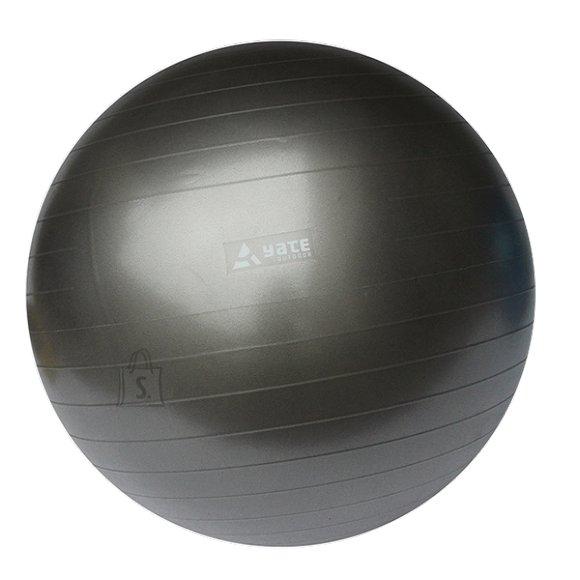 Gym Ball Yate, 55 cm - Grey