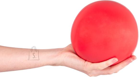 inSPORTline Yoga Ball inSPORTline 3 kg