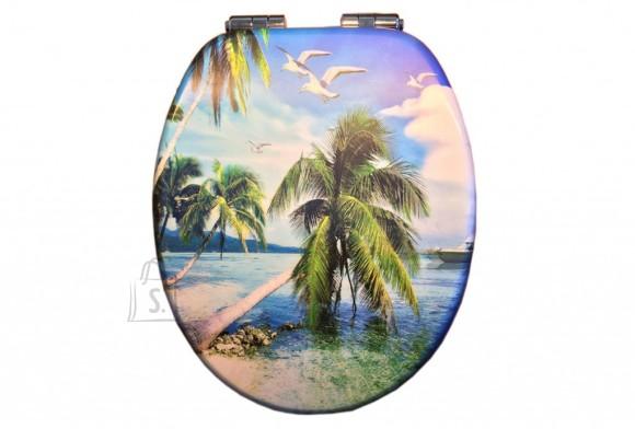 Prill-laud 3D palm