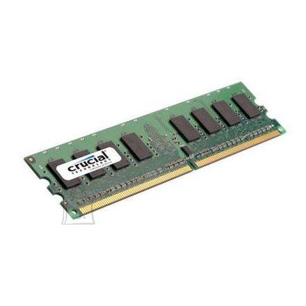 Crucial Crucial 2GB, 240-pin DIMM, DDR2 PC2-6400, CL=6, Unbuffered, NON-ECC, DDR2-800, 1.8V, 256Meg x 64