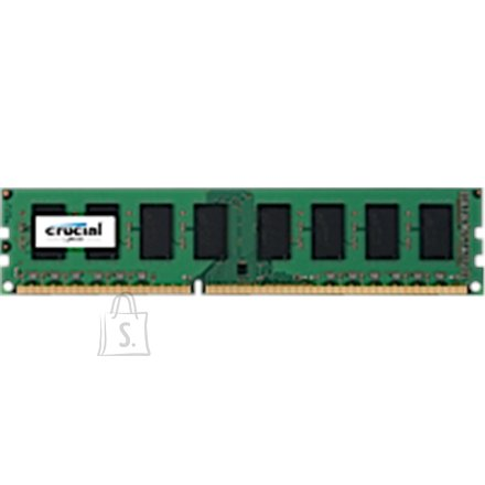Crucial Crucial 8 GB, DDR3, 1600 MHz, PC/server, Registered No, ECC No