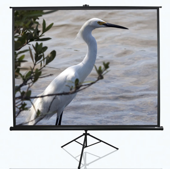 "Elite Screens Elite Screens Tripod Series T120NWV1 Diagonal 120 "", 4:3, Viewable screen width (W) 244 cm, White"