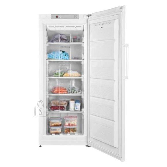 ETA ETA Freezer ETA136890000 A+, Upright, Free standing, Height 155.5 cm, Total net capacity 194 L, No Frost system, Display, White