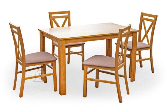 Söögilaua ja toolide komplekt Kentucky