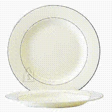 Arcoroc praetaldrik Reception 24 cm