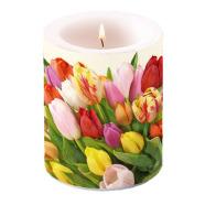 Küünal tulpidega