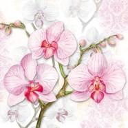 Salvrätikud orhideega